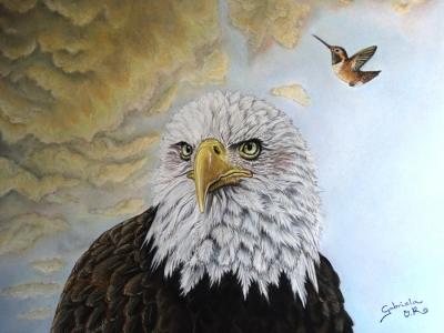 aguila americana_900x600px_gabriela del olmo_animal portrait artist