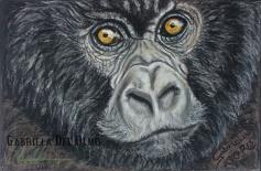 gorila marca gabriela del olmo animal portrait artist