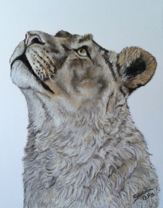 leona_gabriela_del_olmo_animal_portrait_artist
