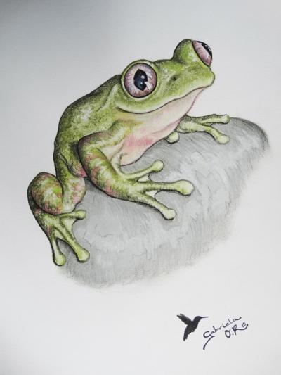 rana_gabriela_del_olmo_animal_portrait_artist
