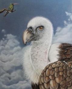 BUITRE_gabriela_del_olmo_animal_portrait_artist_hiperrealismo