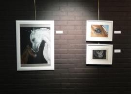 Exposicion_de_pintura_mas_que_animales_hiperrealismo_gabriela_del_olmo_pilar_miro_12
