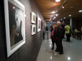 Exposicion_de_pintura_mas_que_animales_hiperrealismo_gabriela_del_olmo_pilar_miro_6