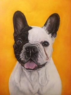 bety_bulldog_gabriela_del_olmo_animal_portrait_artist_hiperrealismo
