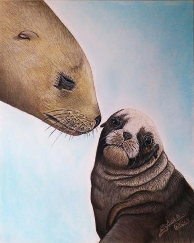 leones-marinos-animal-portrait-artist_gabriela