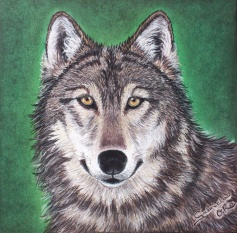 lobo__Gabriela-del-Olmo_Animal-Portrait-Artist
