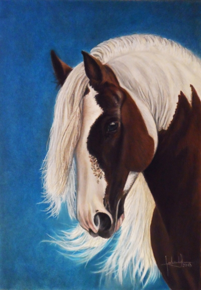pio_caballo_gabriela_del_olmo_animal_portrait_artist_hiperrealismo