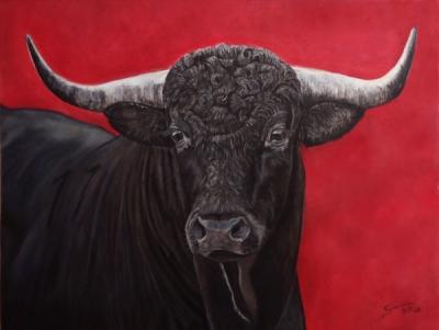 toro_espanol_gabriela_del_olmo_animal_portrait_artist