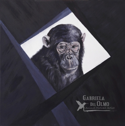 redes-chimpance-gabriela-del-olmo-animal-portrait-artist-no-maltrato-animal-pintora-animalista-cuadros-animales-no-maltrato-animal-madrid-derechos-animales-pintora-madrilena-copyright