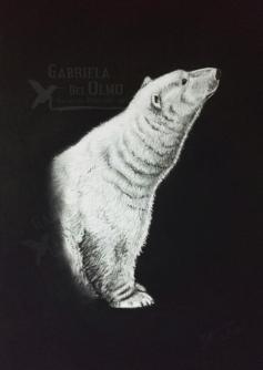 web-sonando-libertad-oso-polar-derechos-animales-no-crueldad-animal-pintora-animalista-gabriela-del-olmo-respeto-concienciacion-no-zoo-carceles-animales-animal-portrait-artist