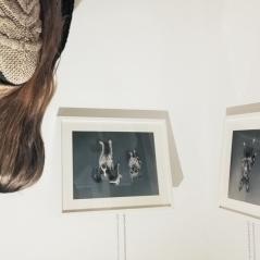 gabriela_del_olmo_herbolario_sol_de_invierno_animal_portrait_artist_mascotas_retratos_perros_productos_naturales_animales_madrid-10