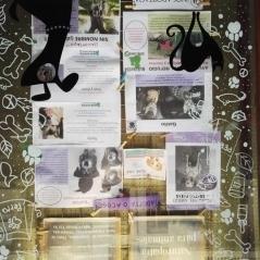 gabriela_del_olmo_herbolario_sol_de_invierno_animal_portrait_artist_mascotas_retratos_perros_productos_naturales_animales_madrid-2
