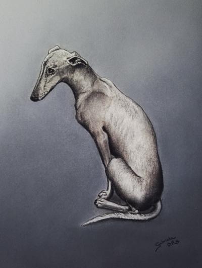 web-galgo_donacion_sosgalgos_gabriela_del_olmo_animal-portrait-artist-pintora-animalista-retratos-perros-mascotas-salvar-galgos-spain