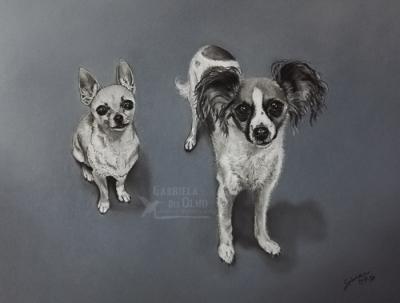 greta-triguita-retrato-mascotas-perros-pintura-pastel-pintora-animalista-gabriela-del-olmo-respeto-concienciacion-animal-obras-aniamles-cuadros-perros-madrid