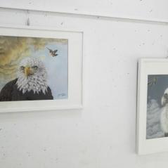 aguila-americana-buitre-animalistas-pintora-animalista-gabriela-del-olmo-animal-portrait-artist-retratos-animales-cuadros-animales-hiperrealismo-exposicion-pintura-respeto-concienciacion