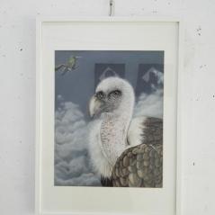 buitre-leonado-pinturas-animalistas-pintora-gabriela-del-olmo-animal-portrait-artist-retratos-animales-cuadros-animales-hiperrealismo-exposicion-pintura-respeto-concienciacion