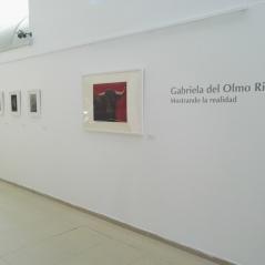 exposicion-pintura-animalista-gabriela-del-olmo-riera-madrid-villanueva-de-la-acanada-2017-mostrando-la-realidad-respeto-animales-concienciacion-2