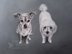 web-retrato-encargo-perritas-pilar-perros-gabriela-de-olmo-mascotas-pintura-2017
